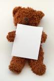 Teddybär, der unbelegtes Meldungpapier anhalten oder Vorstand Stockbilder