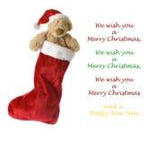 Teddybär in der Weihnachtssocke Lizenzfreies Stockbild