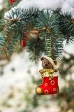 Teddybär in der Weihnachtssocke auf schneebedeckter Niederlassungstanne Stockfotos