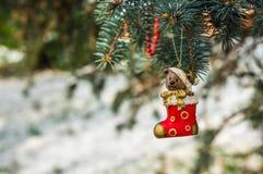 Teddybär in der Weihnachtssocke auf schneebedeckter Niederlassungstanne Lizenzfreies Stockbild