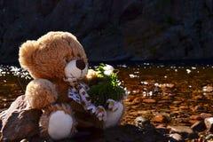 Teddybär durch den Fluss Lizenzfreie Stockbilder