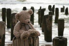 Teddybär durch Meer Lizenzfreies Stockbild