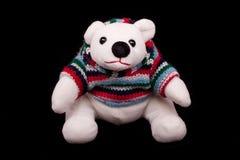 Teddybär-Eisbär Lizenzfreies Stockfoto