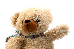 Teddybär getrennt auf weißem Hintergrund Stockfoto