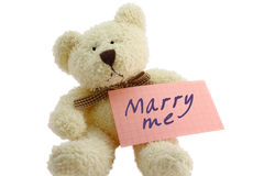 Teddybär - heiraten Sie mich Stockbild