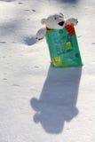 Teddybär im Beutel lizenzfreie stockfotos