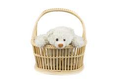 Teddybär im Korb Stockfotografie