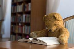 Teddybär liest ein Buch in der Bibliothek - Studieren von Szene lizenzfreies stockfoto