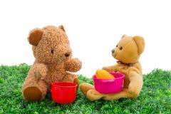 Teddybär mit lizenzfreie stockfotos