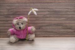 Teddybär mit einer Blume Lizenzfreies Stockfoto