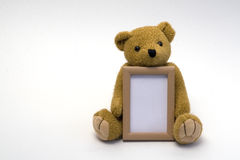 Teddybär mit Feld Lizenzfreie Stockbilder