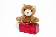 Teddybär mit Geschenkbox Stockfoto