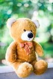 Teddybär mit grünem Naturhintergrund, Spielzeug von Kinder lizenzfreies stockbild