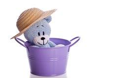 Teddybär mit Hut in einem purpurroten Badewanneneimer Stockfoto