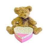 Teddybär mit Innerkasten Lizenzfreie Stockbilder