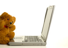 Teddybär mit Laptop Stockfotos