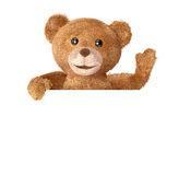 Teddybär mit leerer Karte Lizenzfreies Stockfoto