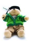 Teddybär mit Sommermarkierungsfahne Lizenzfreie Stockbilder
