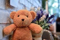 Teddybär mit Weinleseunschärfeblume stockbild