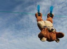 Teddybär nach Dusche Stockbilder