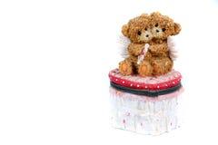 Teddybär-Paar-Kasten Lizenzfreies Stockbild