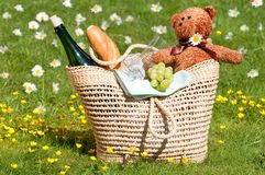 Teddybär-Picknick Lizenzfreie Stockbilder