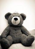 Teddybär-Prinzessin Lizenzfreies Stockbild