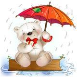 Teddybär sitzt mit einem Geschenk unter dem Regenschirm Lizenzfreie Stockbilder