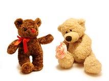 Teddybär-trägt Stockbilder