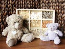 Teddybär-trägt u. Seashells stockfotografie