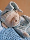 Teddybär-tragen Sie Lizenzfreies Stockbild