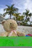 Teddybär am tropischen Strand lizenzfreies stockbild