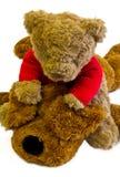 Teddybär und angefüllter Hund Stockfotografie