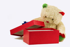 Teddybär, welche nach Paketen mit Geschenk sucht Lizenzfreie Stockfotografie