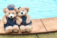 Teddybär zwei, der Hand hält Stockbild
