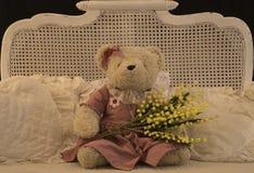 Teddybären acht des Marsches Lizenzfreie Stockbilder