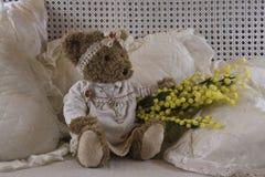 Teddybären acht des Marsches Stockbilder