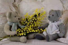 Teddybären acht des Marsches Lizenzfreie Stockfotografie