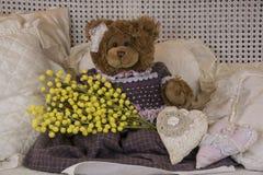 Teddybären acht des Marsches Lizenzfreies Stockbild