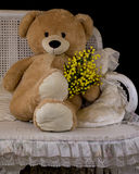 Teddybären acht des Marsches Stockbild