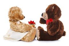 Teddybären, die ein Geschenk geben Lizenzfreies Stockbild