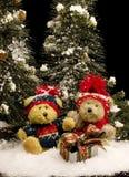 Teddybären mit Geschenk - Vertikale Lizenzfreies Stockfoto