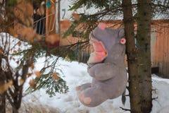 Teddybärflusspferd genagelt, um herauszuputzen stockbild
