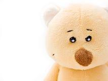 Teddybärgesicht Lizenzfreies Stockbild