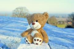 Teddybärsitzen Lizenzfreies Stockbild