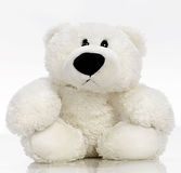 teddybear Στοκ φωτογραφίες με δικαίωμα ελεύθερης χρήσης