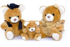 teddybear Στοκ Εικόνες