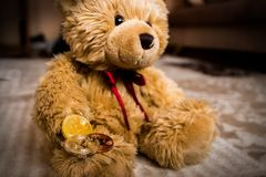 Teddybear and bitcoin. Close-up stock photography