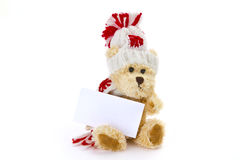 Teddybear with blank business card. On bright Background Stock Image