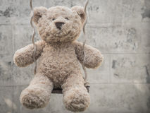 Teddybear en un oscilación Fotos de archivo libres de regalías
